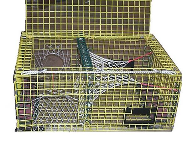 Lobster Traps Including Small Medium And Large Sizes For